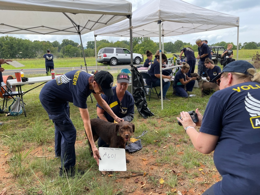 Over 65 animals rescued in Stokes County ahead of Ida flash flood watch