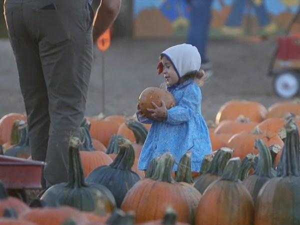 Winston-Salem man offers family at pumpkin patch