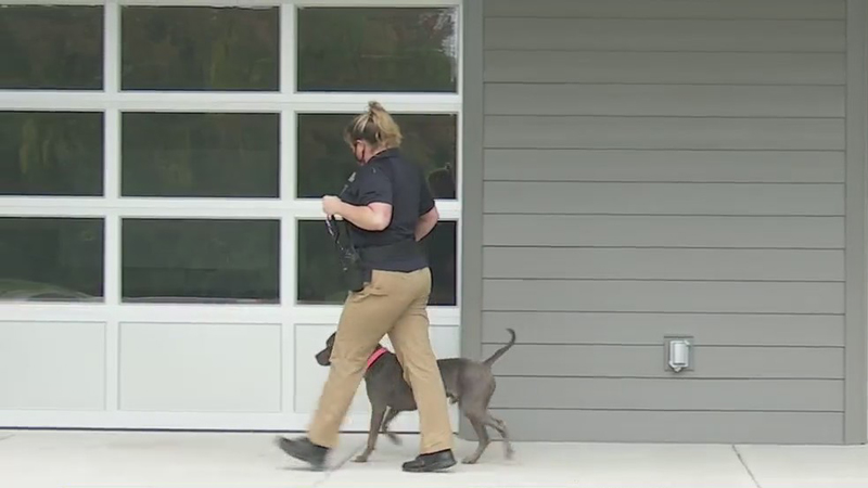 Moving week kicks off for animals headed to new state-of-the-art Guilford County Animal Resource Center